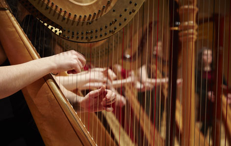 The College's harp students perform together in the Dora Stoutzker Hall